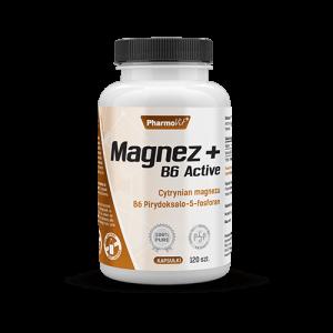 Magnez + B6 Active 120kaps
